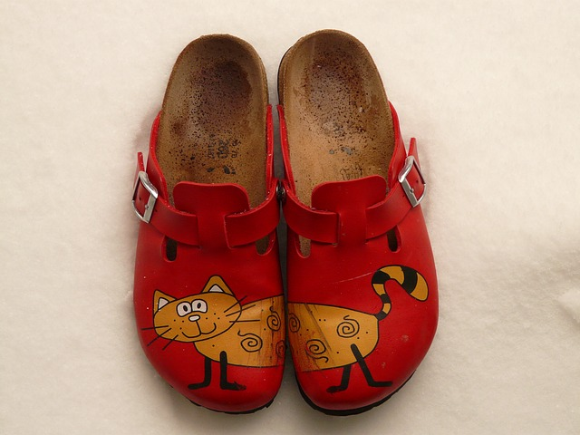 slippers-3887_640